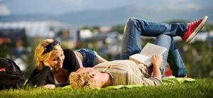 Par som ligger i gresset, Bodø by i bakgrunn. Han holder bok i hånden.