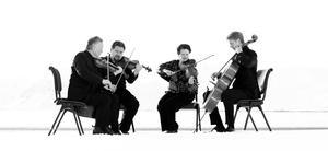 Stormen Kvartettserie med Engegårdkvartetten